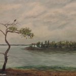 Fish Hawk on Sand Pine painting