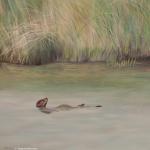 Marsh Otter painting
