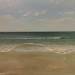 Atlantic Seagulls 2 painting