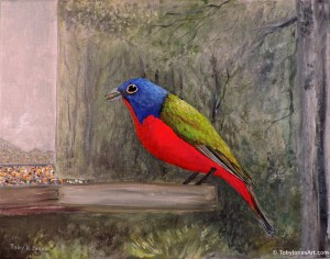 "Painted Bunting acrylic on canvas 16 x 12 x 0.5"" price: $500"