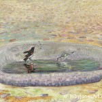 American Redstarts Meet in a Bath painting