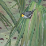 "Yellow-throated Warbler on Palmetto acrylic on canvas 16 x 12 x 1.5"" released: 1/21/2018 price: $800"