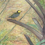 "Hooded Warbler acrylic on canvas 16 x 12 x 1.5"" released: 2/12/2018 price: $1500"