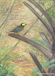 """Hooded Warbler acrylic on canvas 16 x 12 x 1.5"""" released: 2/12/2018 price: $1500"""