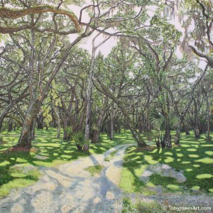 "Oak Hammock in Princess Place Preserve acrylic on canvas 36 x 36 x 1.5"" inches price: $6500"